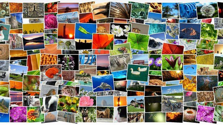 Vacances : prolongez l'instant avec un livre photo